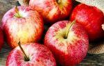 К чему снятся яблоки на дереве: толкование по различным сонникам