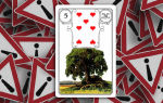 Карта ленорман «дерево» в гадании: значение и сочетание с другими картами