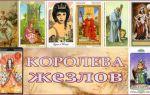 Галерея карт таро королева жезлов из всех колод