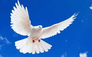 День Святого Духа: какого числа