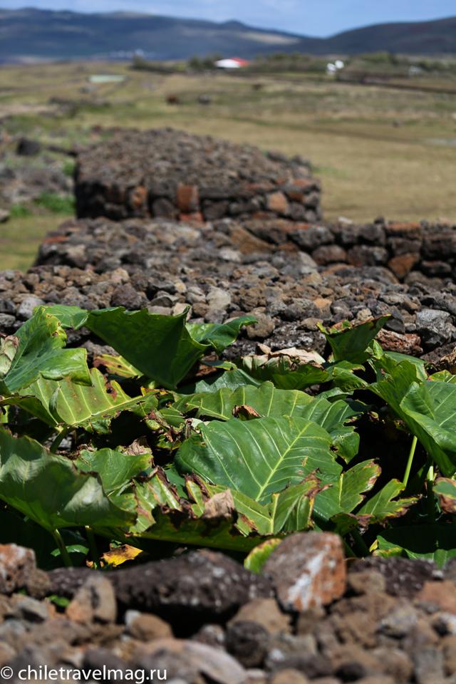 Какой стране принадлежит остров Пасхи