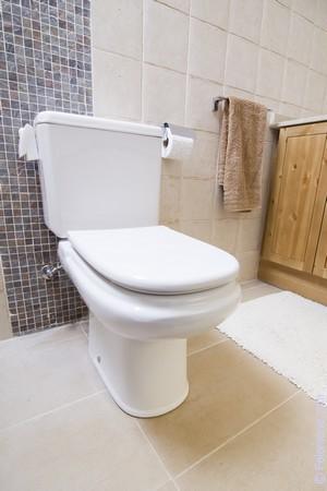 К чему снится туалет: толкование сна по различным сонникам
