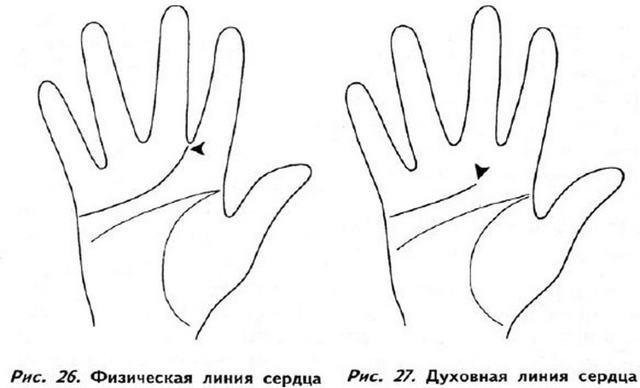 Хиромантия: значение основных линий при гадании на руке для начинающих